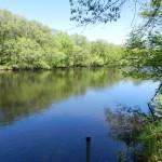 Home For Sale On Elk River