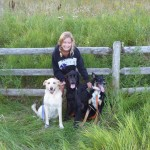 A Little Story About Two of My Dogs That Gave Alot of Love…