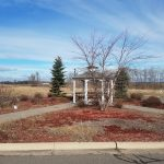 Land For Sale In Montrose Minnesota by Derrick Monroe